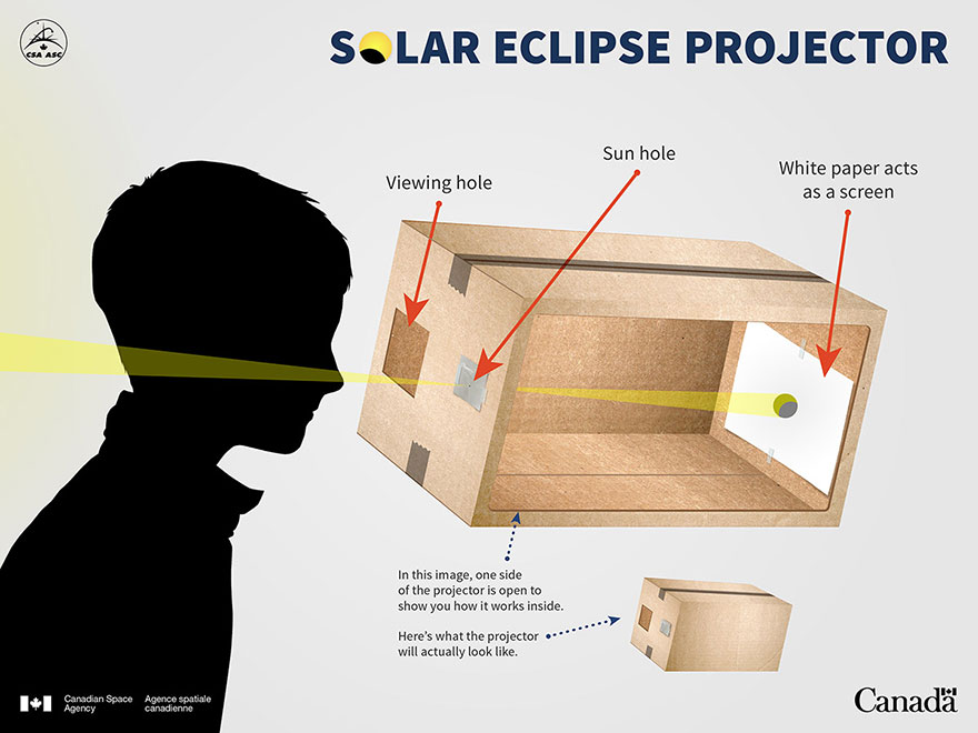 Solar eclipse projector