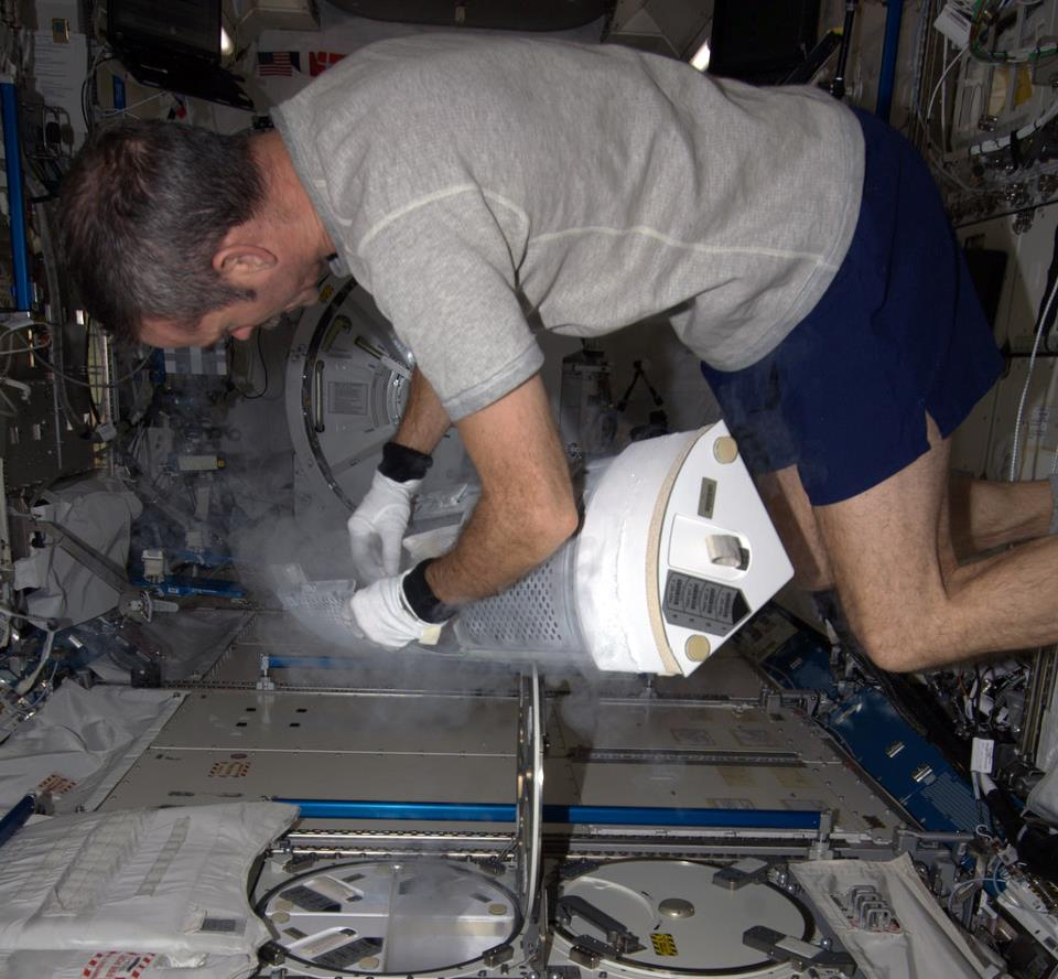 Hadfield storing biological samples in the Minus Eighty Degree Laboratory Freezer