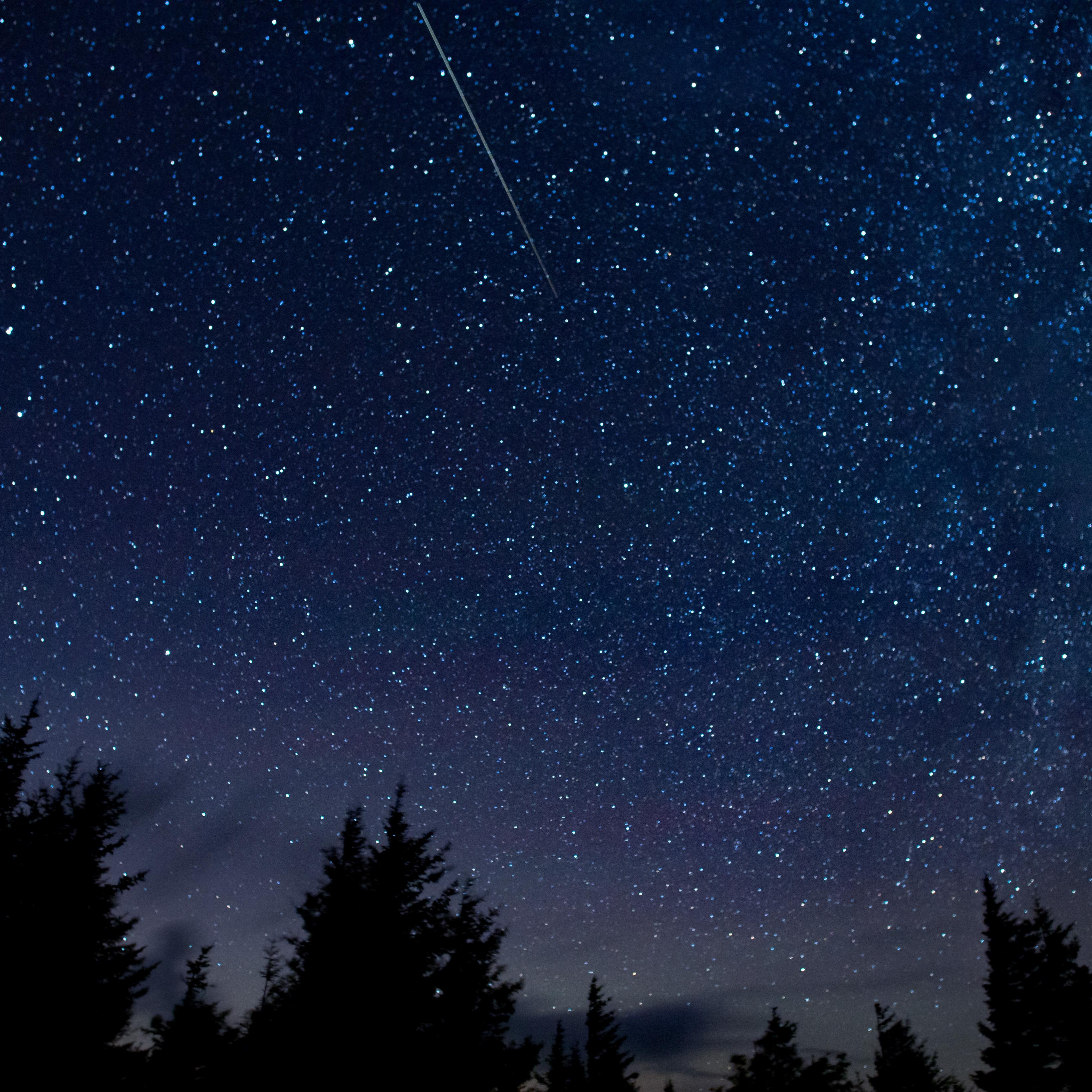 Perseid Meteor Shower - Canadian Space Agency