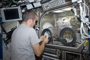 The Microgravity Science Glovebox