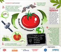 Tomatosphere™ Project - Infographic