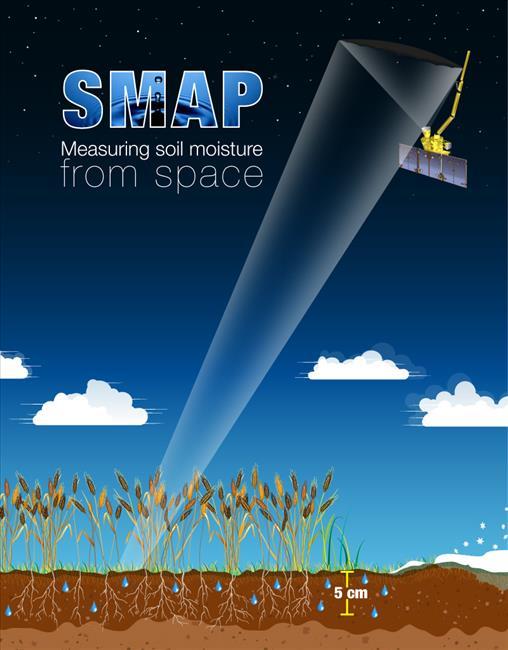 SMAP Infographic