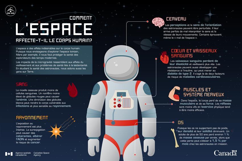 Comment l'espace affecte-t-il le corps humain - Infographie
