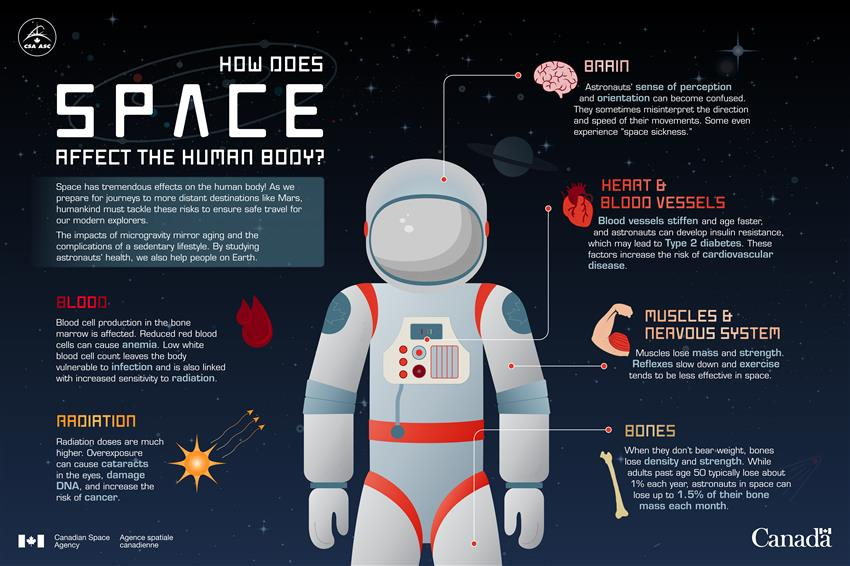 How Does Space Affect the Human Body - Infographic