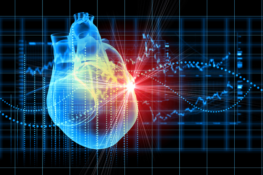 The Vascular Series Studying Heart Health In Space